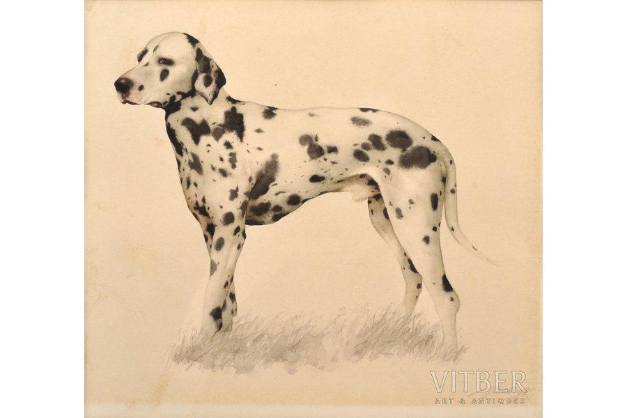 Palchuk Tatyana (1954), a Dalmatian, paper, water colour, 17.5 x 20 cm