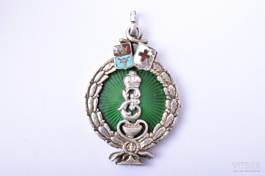 jetton, Chisinau Society of Doctors and Pharmacists, Bessarabia,, silver, enamel, Russia, 1907, 36 x 24.4 mm, 13.19 g