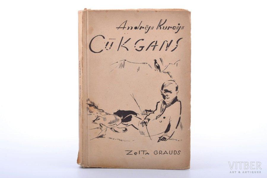 """Andrejs Kurcijs, """"Cūkgans"""", kādas bērnības stāsts; vāku zīmējis Romans Suta, Zelta Grauds, Riga, 172 pages, 20.3 x 13.9 cm"""