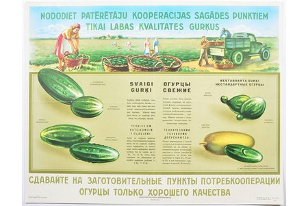 """Give only good quality cucumbers!, 1958, paper, 57.7 x 45.1 cm, artist - A. Rank, publisher - """"Kooptorgreklama Centrosoyuza"""", Moscow"""