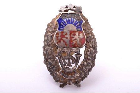 знак, Латвийский Государственный техникум, серебро, Латвия, 20е-30е годы 20го века, 42 x 27.5 мм, 9.63 г, скол эмали