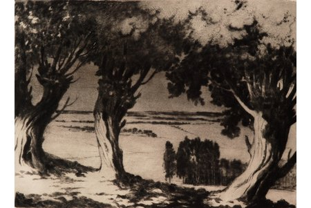 Apinis Arturs (1904-1975), Willow near Kandava, 1965, paper, etching, 29 x 39.5 cm
